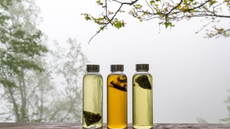 (中文) 疫情潜伏的夏季,如何喝茶增强免疫力